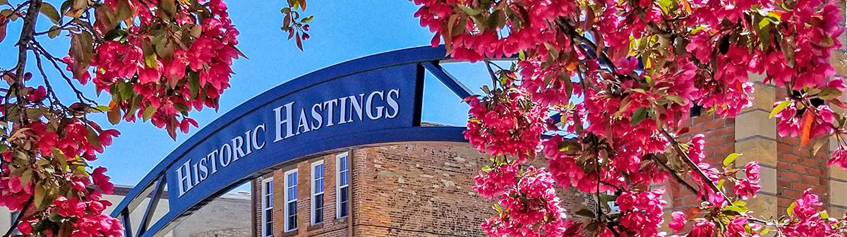 Spring in Hastings